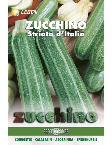 ZUCCHINO STRIATO ITALIA LBO