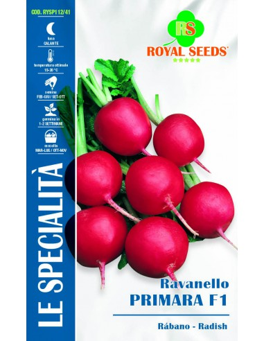 RAVANELLO PRIMARA HY F1 SP