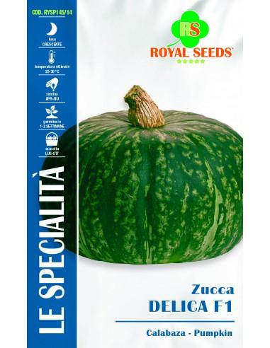 ZUCCA DELICA HY F1  SP