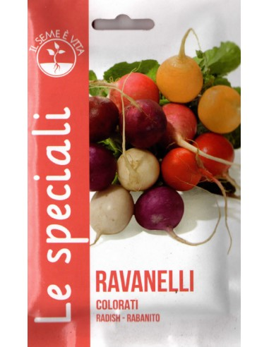 RAVANELLI COLORATI SPE
