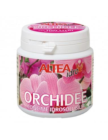 ALTEA ORCHIDEE IDORSOLUBILE 100G