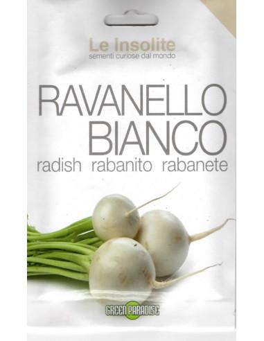 RAVANELLO TONDO BIANCO
