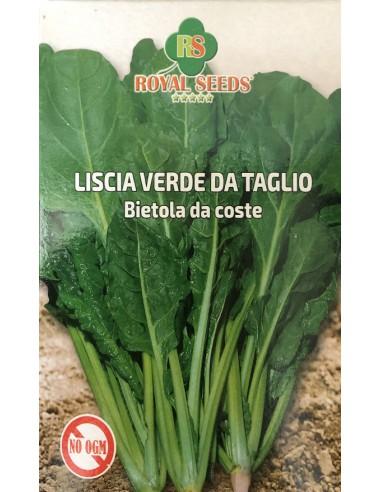 BIETA LISCIA VERDE DA TAGLIO GR 100