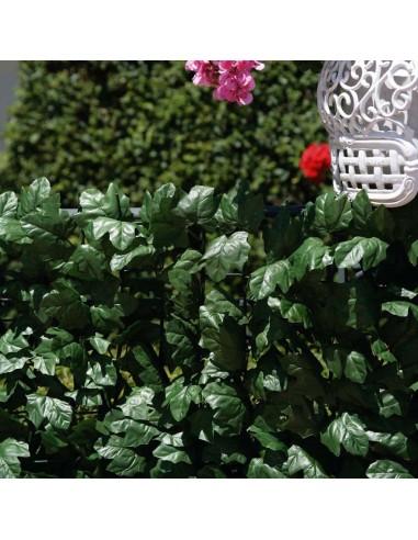 Siepe Verdecor a foglie tipo edera m...