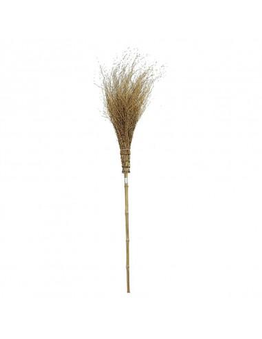 Scopa in bamboo per esterno con...