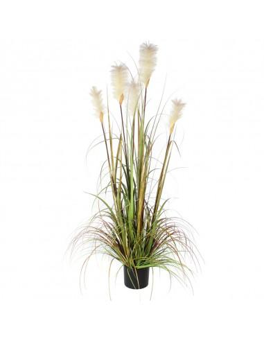 PLUME GRASS FOXTAIL GREEN - H150XD70 cm