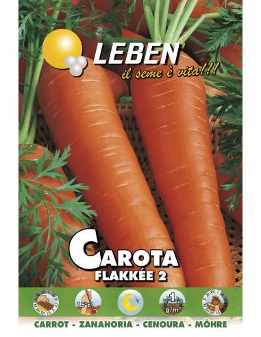CAROTA FLAKKEE'  LBO
