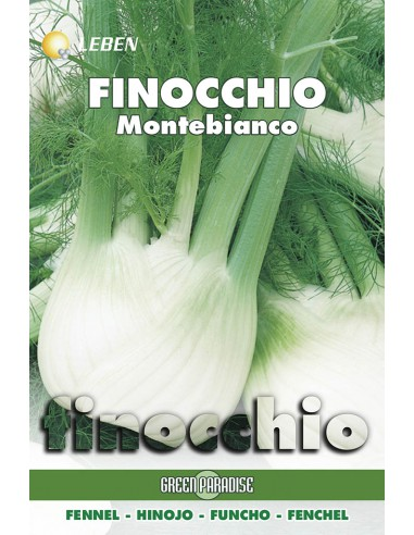 FINOCCHIO MONTEBIANCO  LBO