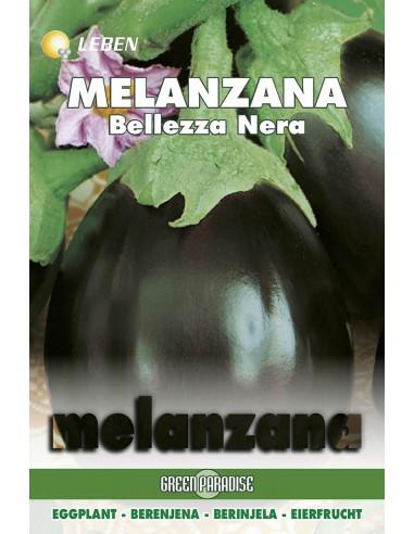 MELANZANA BELLEZZA NERA  LBO